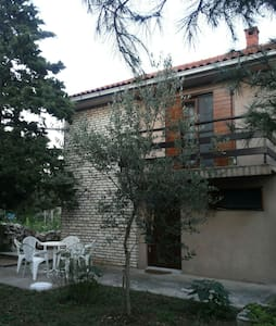 Quietly situated Dalmatian house - Silba