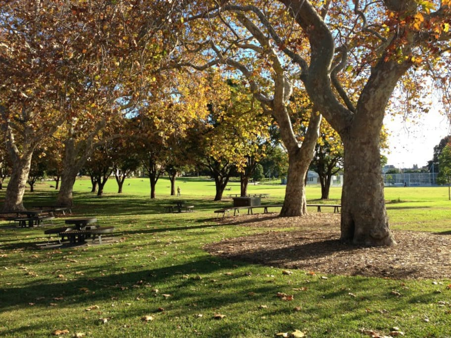Prince Alfred Park is just across the road to enjoy