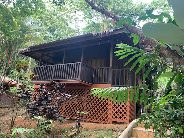 Nature Lovers Rustic Cabin, Near Dominical/Nauyaca