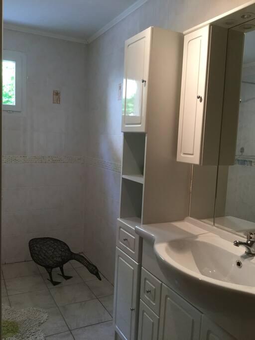 Grande salle de bain avec douche à l'italienne