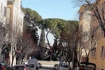 Follow Via Niccolò V to..