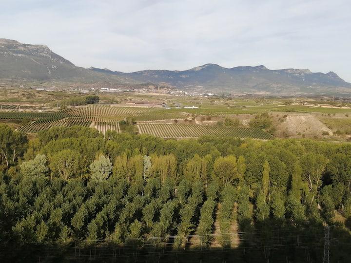 Amplio Apto con terraza vistas a Sierra Cantabria.