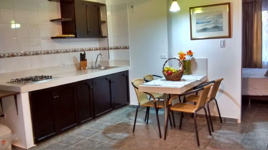 Se rentan apartamentos amoblados y sin amoblar - Cali - Lägenhet