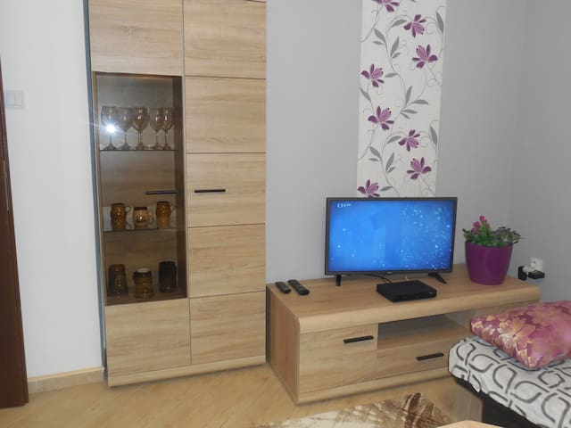 Apartment Blehovi 2 - Decin - Apartment