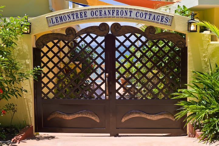 Front gate entrance to your oceanfront living