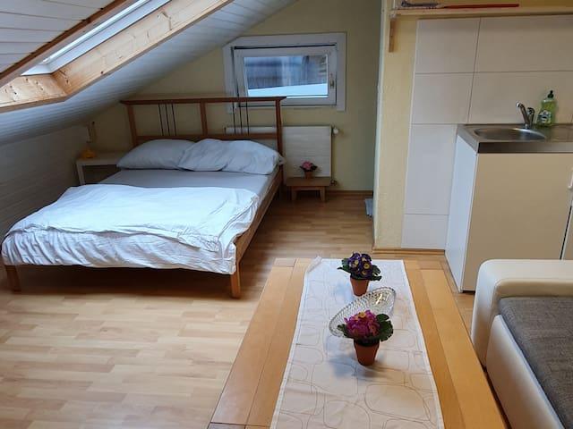 Zimmer m. Dusche+Küche direkt an Schweizer Grenze