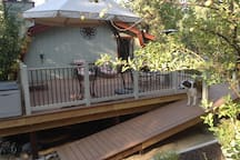 Brandy is happy using the ramp to access the deck area.