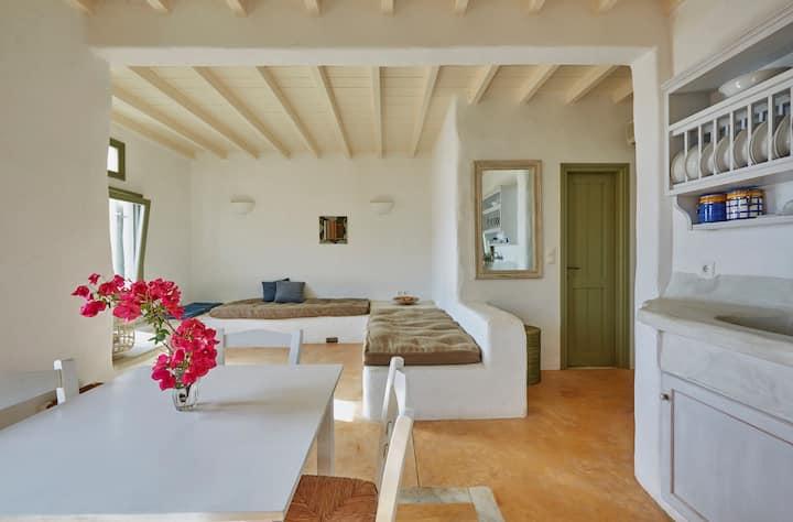 Ochre Dream, Beach front & Sunset villa Naousa (1)