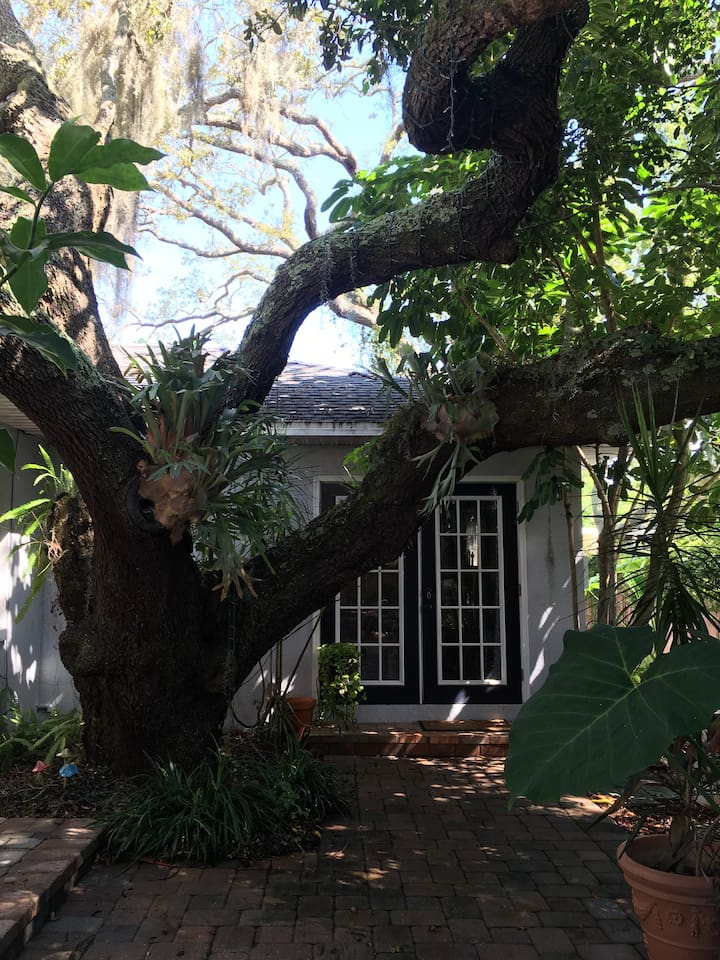 Walk down the garden path to the majestic, centuries old, oak and your front door.