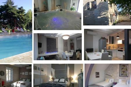 Chambre Ardoise avec séance SPA piscine chauffée - Sainte-Maure-de-Touraine - Guesthouse