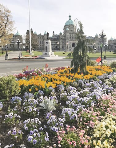 Parliament building in downtown Victoria - 25 min drive by car