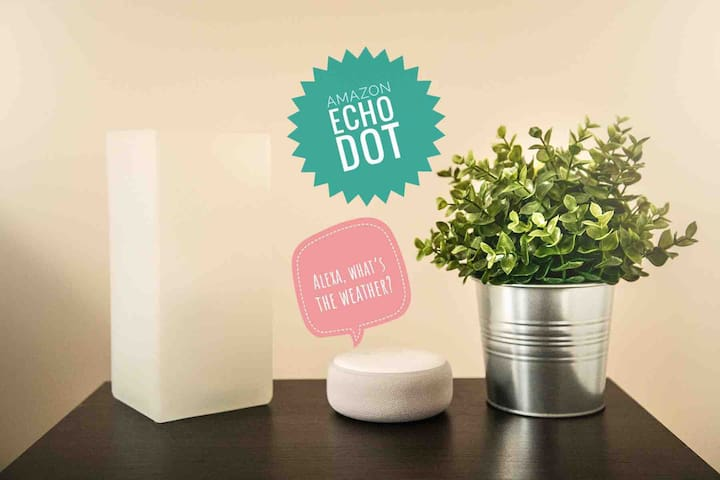 Amazon Echo Dot available. You can ask questions like: Alexa, what's the weather?; Alexa, what's 20 degrees Celsius in Fahrenheit?. Ask for music, news, information and more.