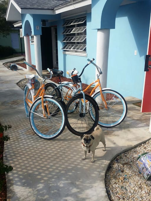Bicycle rentals to make your Bahamas experience more adventurous