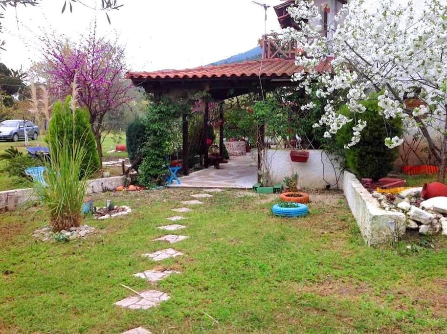 Garden of the summer house in Vourvourou
