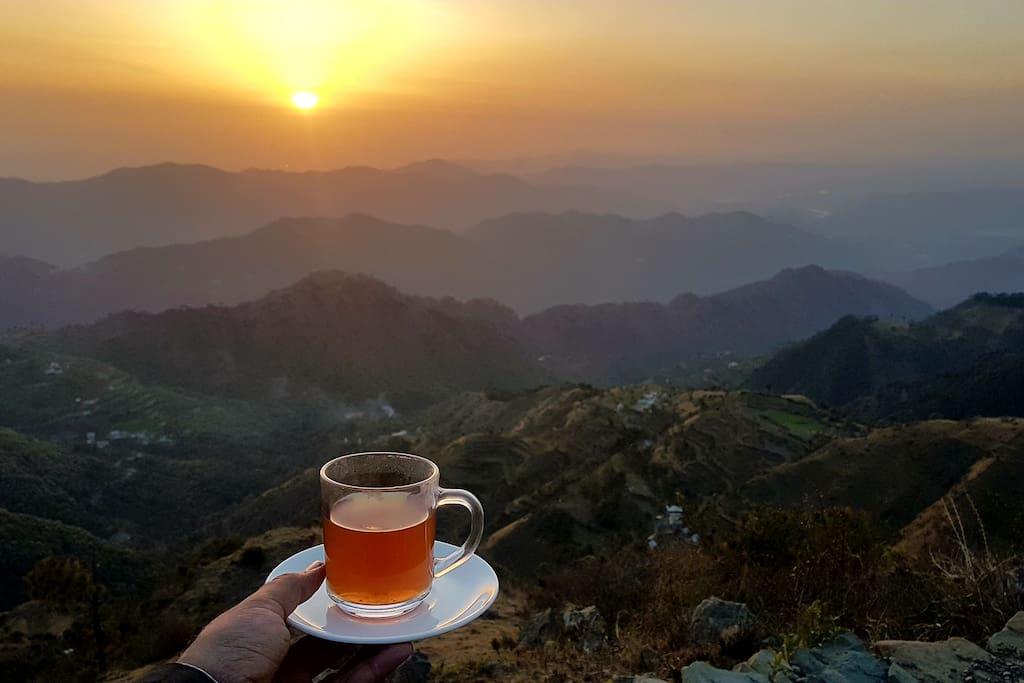 Home made Ayurvedic Tea made from farm grown herbs