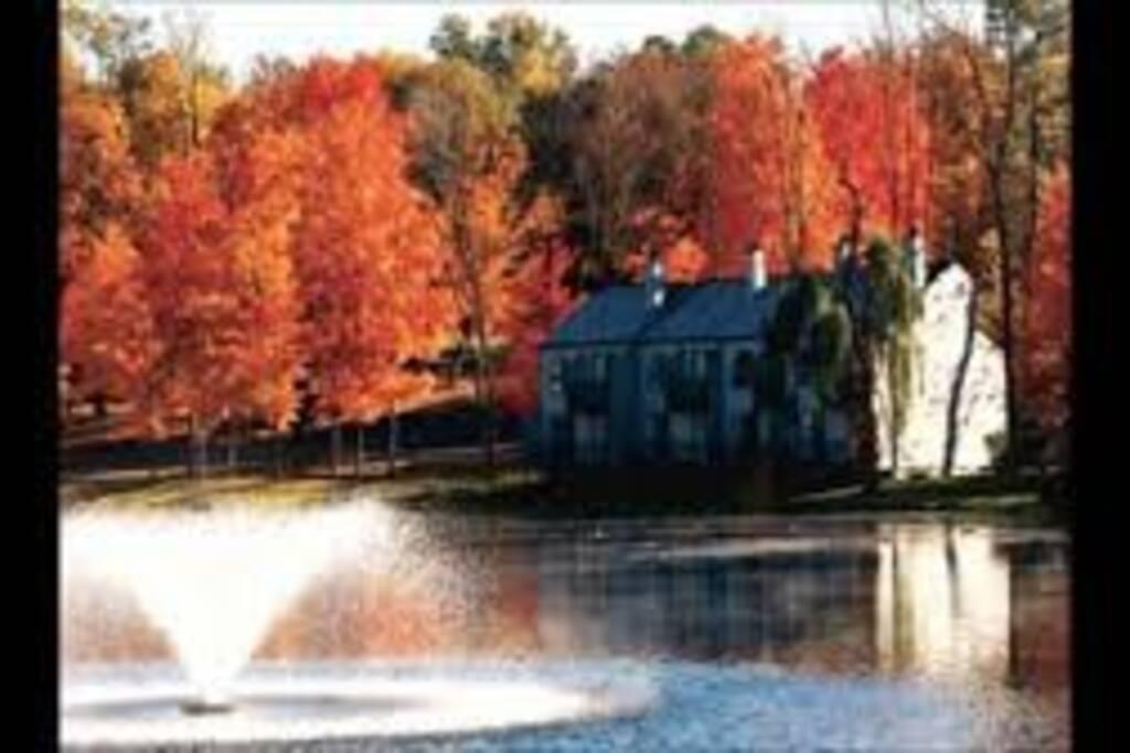 Tree Tops Villas, lake side in the Fall