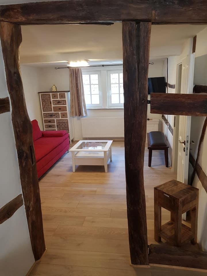 Zauberhafte Wohnung, in der Nähe von Heidelberg