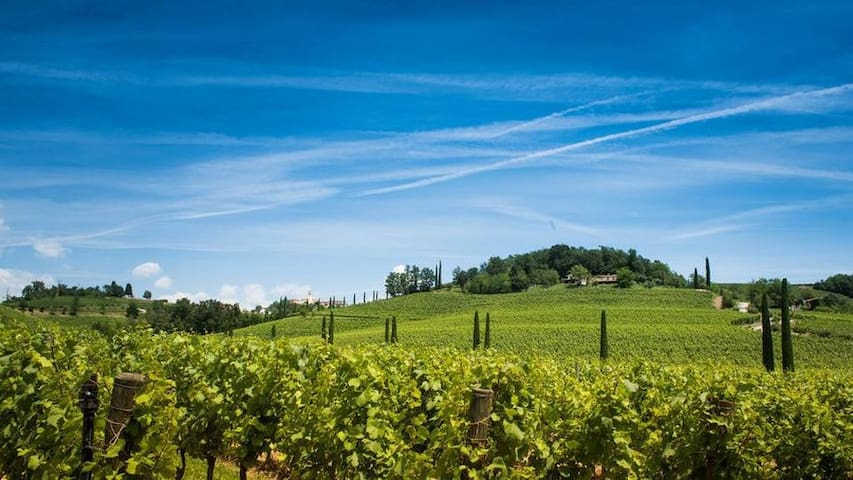 Holiday home in the Collio