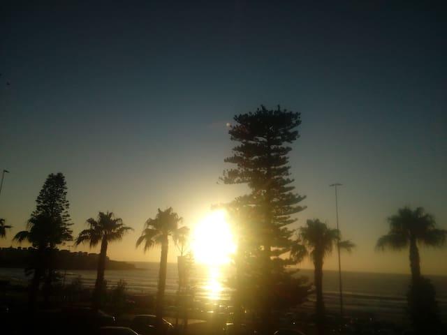 Bondi Beach (Absolute Beach Front Property). - Bondi Beach - Huoneisto