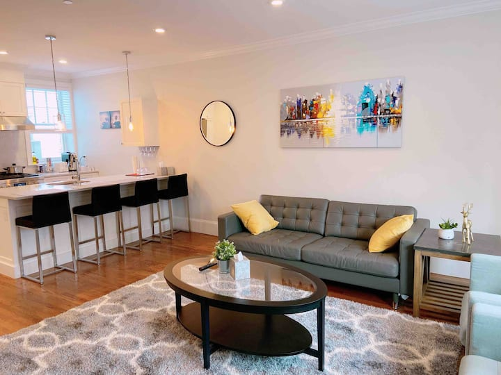 Luxurious 2B/2B in the center of brookline (8)