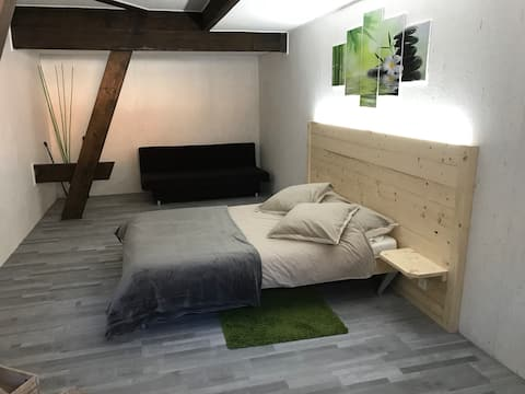 2.5 rooms GREEN Osogna