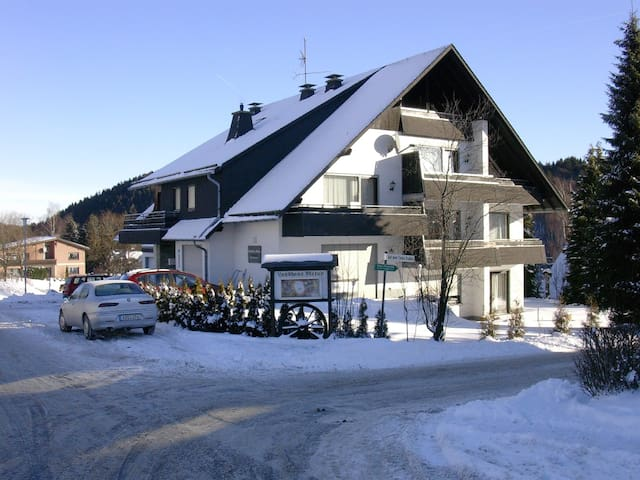 2-room apartment 40 m² Ferienwohnung for 3 persons in Willingen - Willingen - Appartement