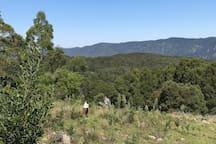 Historic Farm Stay - Braidwood - NSW
