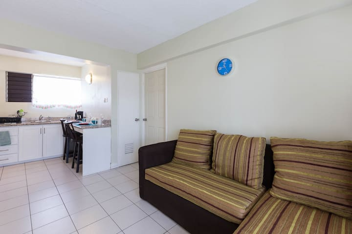 One bedroom centrally located apartment. - Kingston - Apartamento