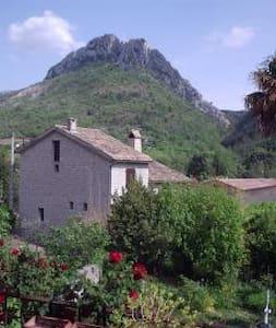 Location de vacances drôme provençale - Buis-les-Baronnies - 连栋住宅