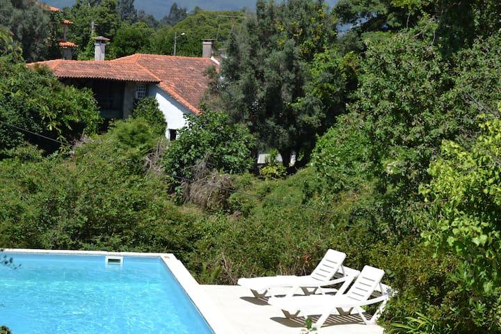 Private villa with pool - Ponte de Lima - Hus