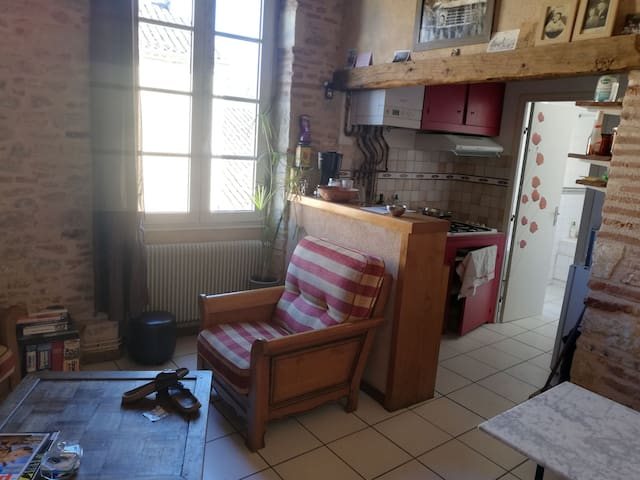 Charmant appartement cadurcien