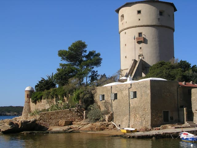 an ancient tower on the sea