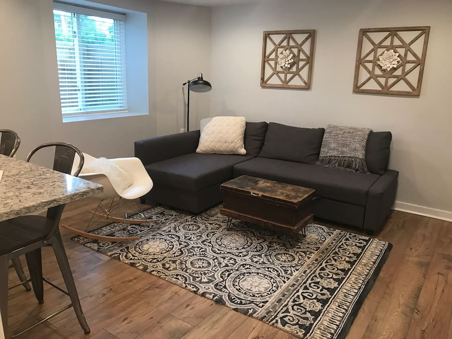 Living room with couch and pullout bed for extra guests