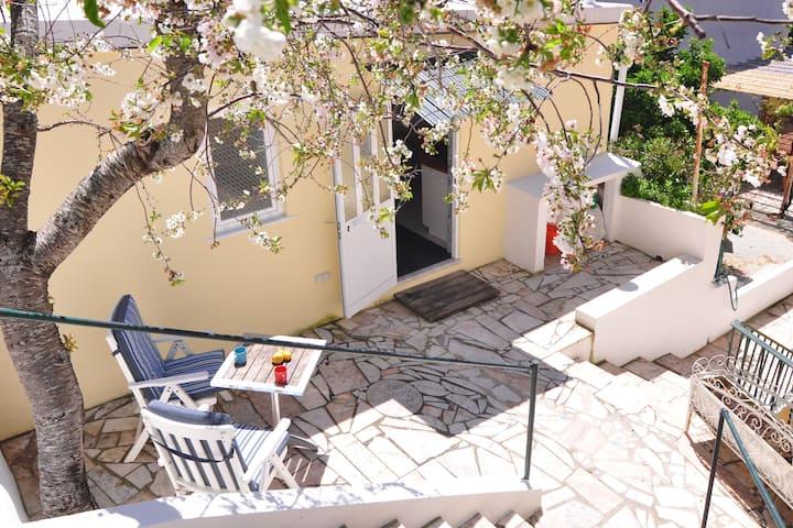 Garden Guesthouse near Santo Amaro beach