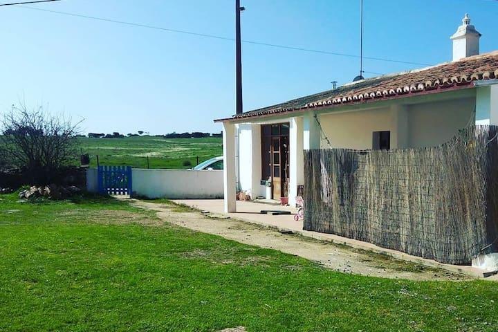 Maison à la campanhe en plein Alentejo