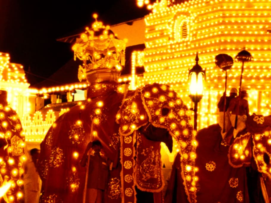 Don't miss your opportunity to see this Big Buddhist Festival in Kandy