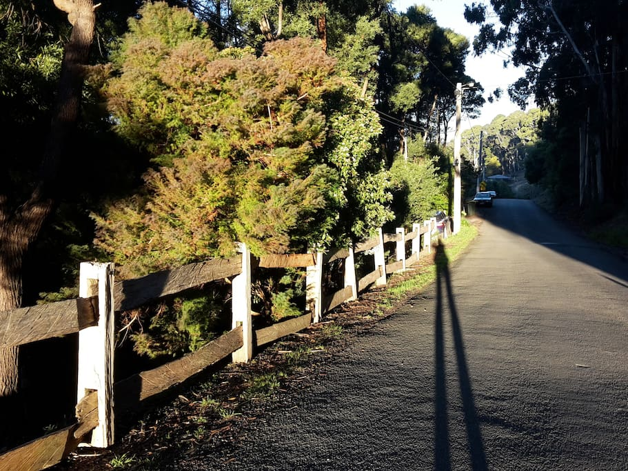 Take an evening stroll down Golden Point Road