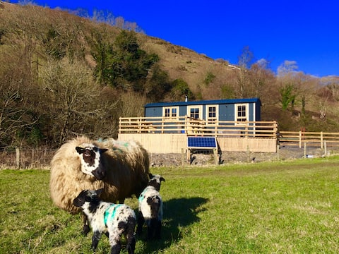 Cut Mawr - Shepherds Hut Retreat