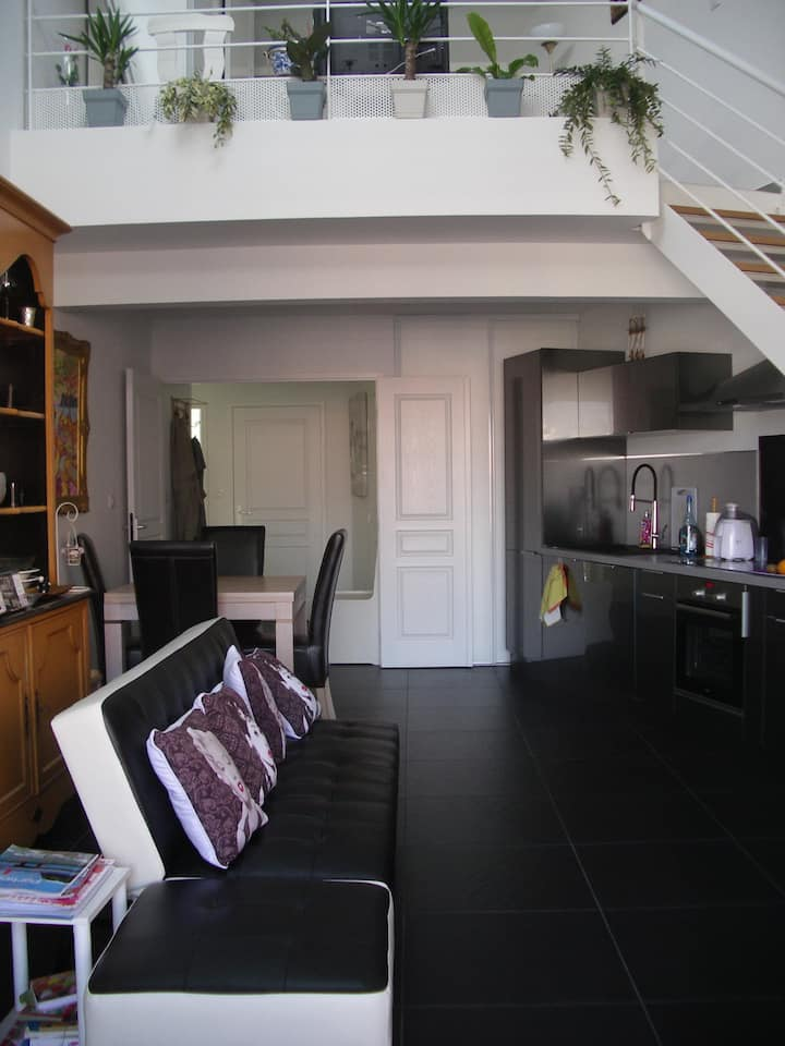 Duplex standing climatisé 2 chambres face au port