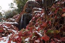 2009年这场雪来的真早