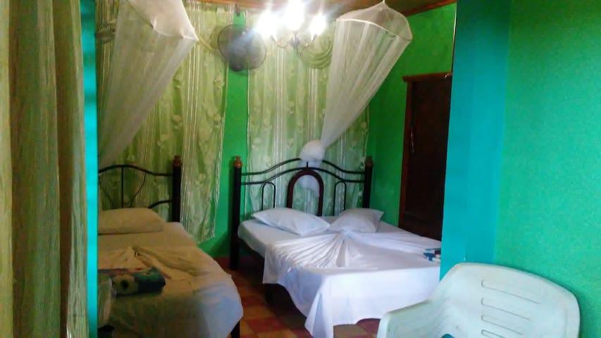 Teresa House - Green Room