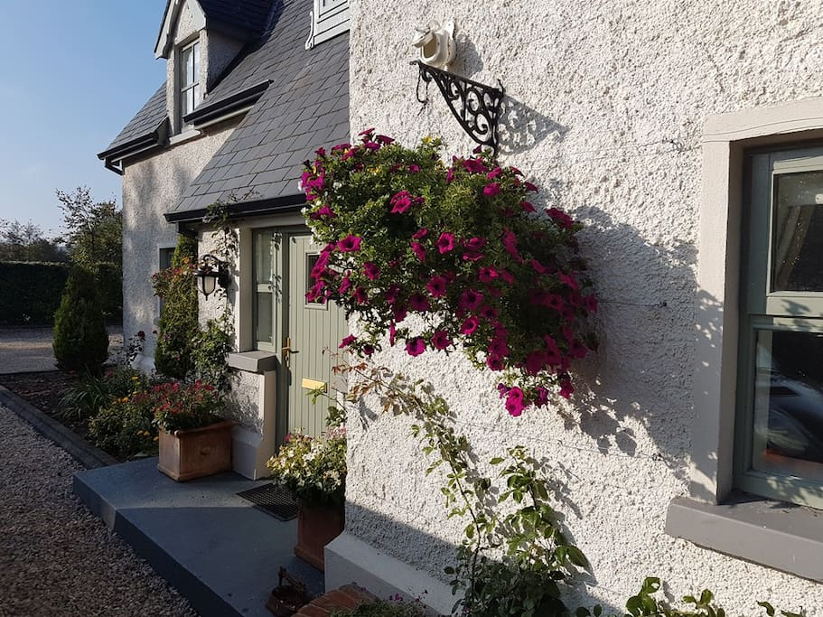 River Cottage hanging baskets in the late evening sun