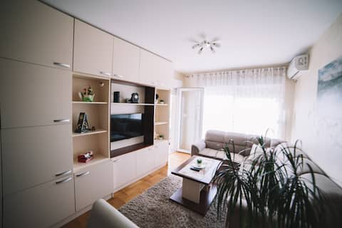 Apartment Goga