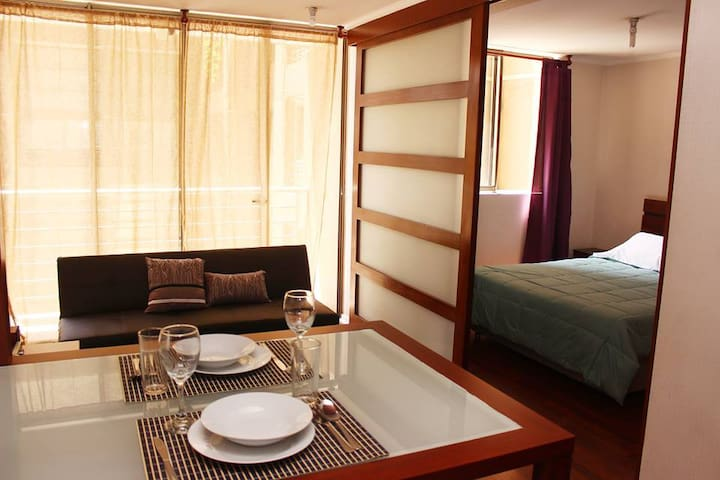 Apartment in Bellas Artes