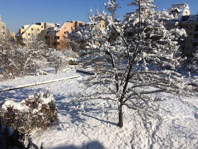 Parc Sud Sofia Chambre Calme