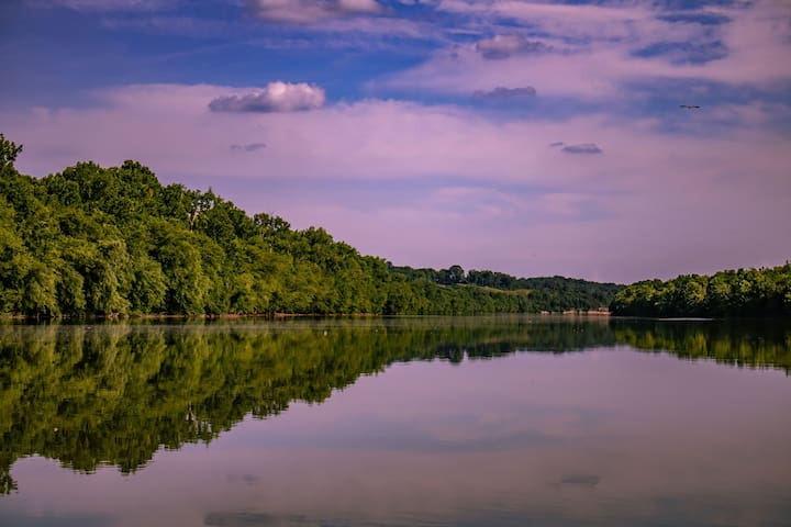 Heart Haven: A Haven in the Heart of Tennessee