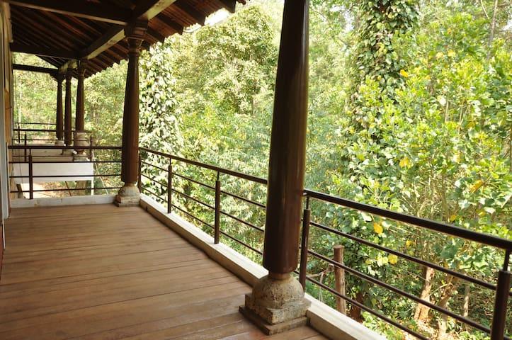 The Courtyard Chikkamagaluru