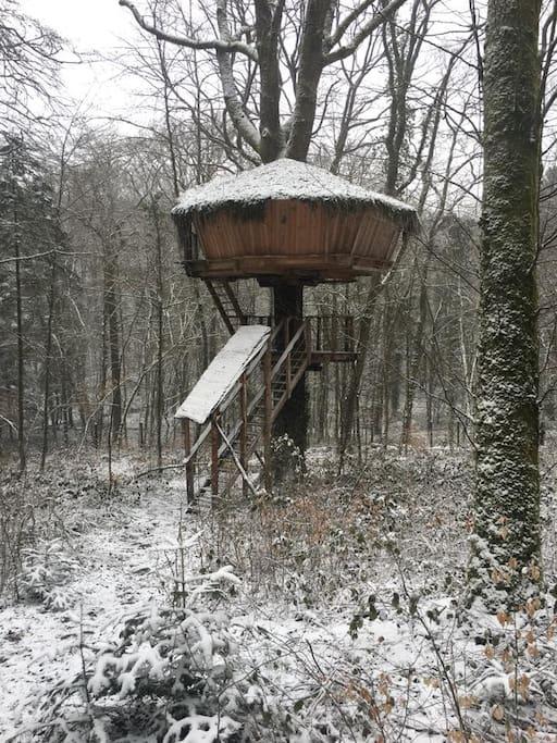 cabane az alom treehouse l 39 arbre cabane nature baumh user zur miete in guyonvelle grand. Black Bedroom Furniture Sets. Home Design Ideas