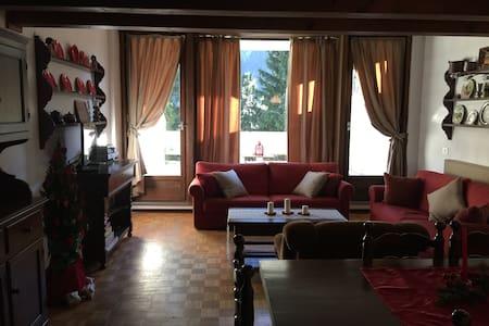 Dolomites apartment Val di Fassa - Mazzin