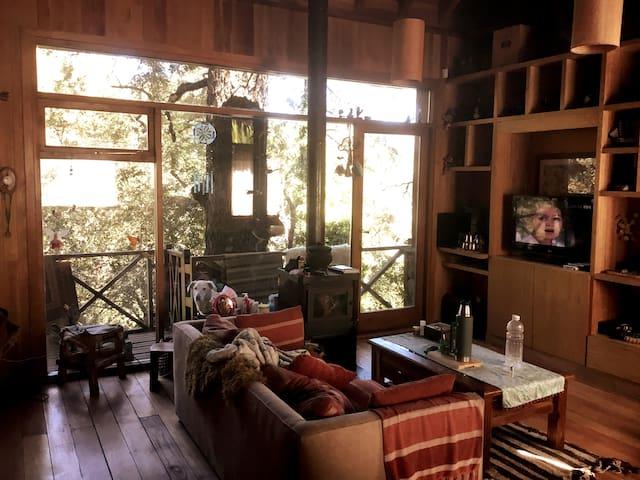Cálido Living, donde destacan la salamandra a leña y el amplio ventanal con vistas al bosque y la ciudad.